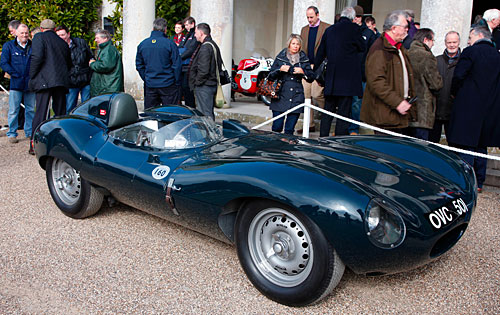 Jaguar D Type 1954